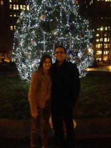 Madison Sq Park tree