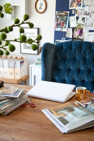blue velvet chair pinterest 2