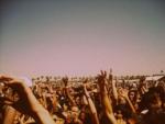 Coachella fans