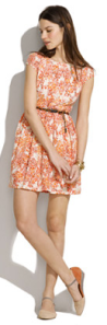 Madewell printed lacebloom dress