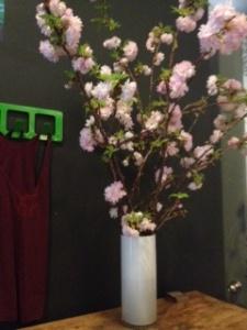Bari flowers